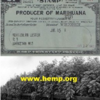 Paul Stanford article about hemp, marijuana and cannabis
