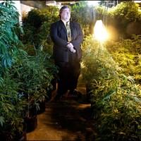 Paul Stanford with medical marijuana garden